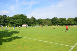 Sports pitches in action